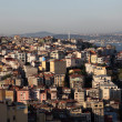 Panoramic view of Istanbul from the Galata Tower — Stock Photo #6243502