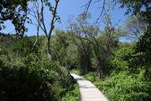Wooden path in Krka National Park, Croatia — Stock Photo