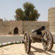 Stock Photo: Sultbin Zayed Fort in Al Ain