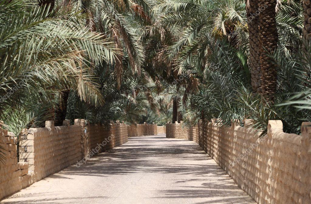 100 Free Online Dating in Al Ain