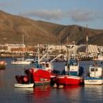 Fishing boats in the harlbor of Los Cristianos, Canary Island Tenerife, Spa — Stock Photo