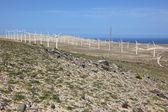 Rüzgar türbinleri için temiz enerji — Stok fotoğraf