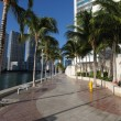 Promenade in Downtown Miami, Florida USA - Stock Photo