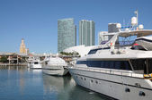Motor Yachts at Miami Bayside Marina — Stock Photo