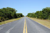Road in the Everglades National Park — Stock Photo