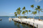 Jetty and Palm Trees on Florida Keys — Stock Photo