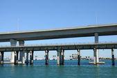 Biscayne most v miami, florida — Stock fotografie