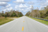 Road in the Everglades National Park, Florida USA — Stock Photo