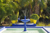 Jardin Majorelle, Marrakech, Morocco — Stock Photo