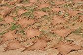 Secado de marruecos al aire libre, fes, pieles de animales — Foto de Stock