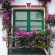 Window framed by flowers — Stock Photo