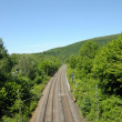 Railroad track running through a green landscape — Stock Photo