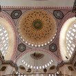 Cupola of the Suleymaniye mosque in Istanbul, Turkey — ストック写真