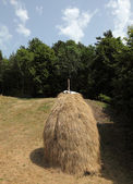 Hay stack on a meadow in Croatia — Stock Photo