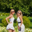 Two girls in summer park — Stock Photo #6381105