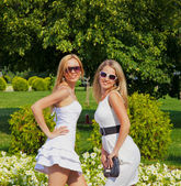 Two girls in summer park — Stock Photo