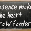 """Absence makes heart grow fonder"" written on blackboard — Stock Photo #6573778"
