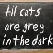 """All cats are grey in dark"" written on blackboard — Stockfoto #6574176"