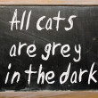 """All cats are grey in dark"" written on blackboard — Stock Photo #6574176"