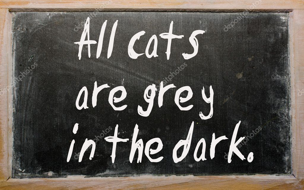 Blackboard writings All cats are grey in the dark  Stock Photo #6574176