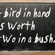 """bird in hand is worth two in bush"" written on blackboard — Stock Photo #6642688"