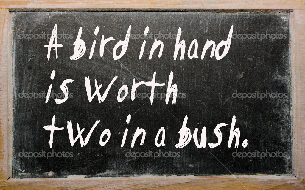 a bird in hand is worth two in bush essay A bird in hand is worth two in the bush essay - 330050.