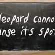 """A leopard cannot change its spots"" written on a blackboard — Stock Photo"