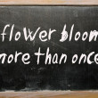 "图库照片: ""flower blooms more thonce"" written on blackboard"