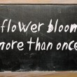"Zdjęcie stockowe: ""flower blooms more thonce"" written on blackboard"