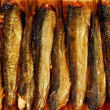 Smoked sprat - Stock Photo