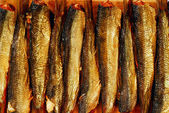Smoked sprat — Stock Photo
