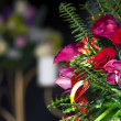 Floral bouquet — Stock Photo #6244646