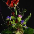 Floral bouquet — Stockfoto #6244649