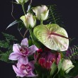 Blumiges bouquet — Stockfoto #6244650