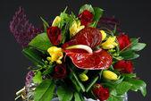 Floral bouquet — Stock Photo