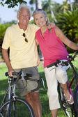 快乐的高级夫妻骑自行车的绿色公园 — 图库照片