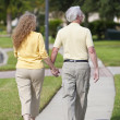 Rear View Senior Man and Woman Couple Walking Holding Hands — Stock Photo #6319770