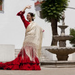 Traditional Woman Spanish Flamenco Dancer In Red Dress — Stock Photo