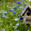 Birdhouse Among the Flowers - Stockfoto