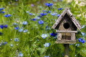 Birdhouse Among the Flowers — Foto Stock