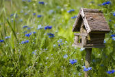 Birdhouse Among the Flowers — Stock Photo