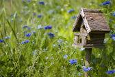 Birdhouse Among the Flowers — Stock Photo
