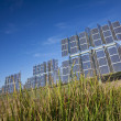 Field of Renewable Green Energy Photovoltaic Solar Panels — Stock Photo