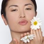 Daisy Kisses — Stock Photo #6480446