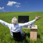 Бизнесмен празднует поднятыми на стойке в зеленое поле — Стоковое фото