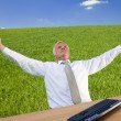 Successful Businessman In A Green Field — Stock Photo