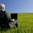 Blue Sky Thinking Businessman Using Laptop Computer in Green Fie — Stock Photo #6481654