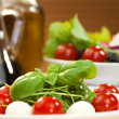 Stock Photo: Tomato MozarellRocket or Rocquet Salad With Olive Oil and Bals
