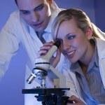 Scientific Research Team — Stock Photo