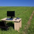 Desk With Telephone and Computer In Green Field With Path — Stock Photo